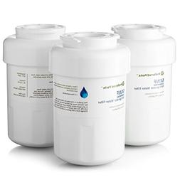 GE MWF Refrigerator Water Filter | SmartWater Compatible Car