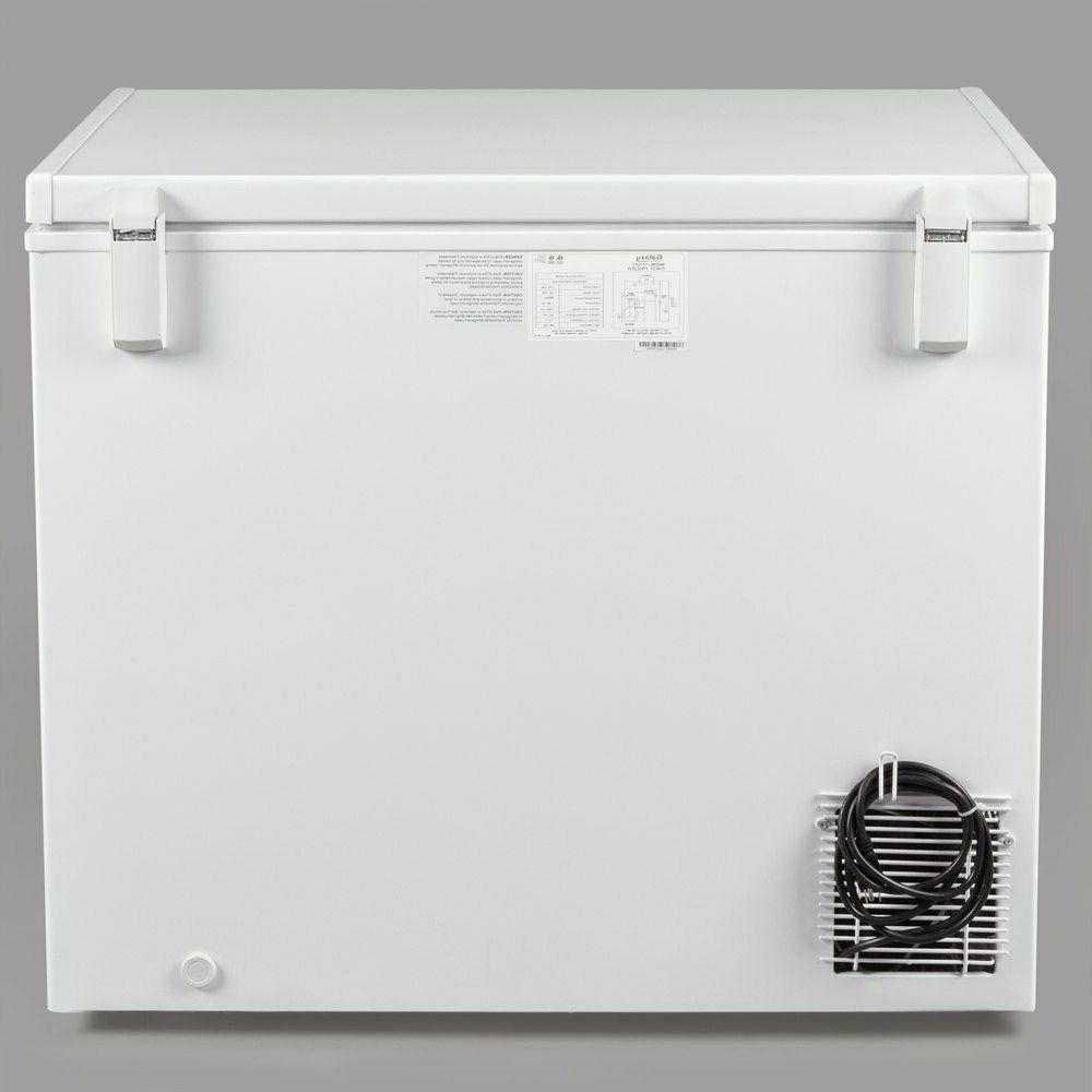 Ft. Freezer -