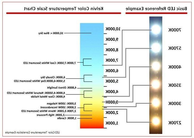 6500K Clear COOLER/ FREEZER LED 4 FT