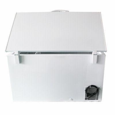 Commercial Chest Freezer 10